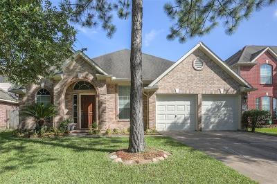 Houston Single Family Home For Sale: 11110 Riverbank Ridge Lane
