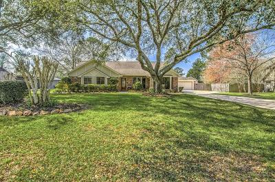 Friendswood Single Family Home For Sale: 908 Evergreen Drive