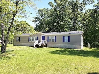 Willis Single Family Home For Sale: 9630 Creek Vista Lane