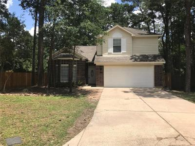 Spring Single Family Home For Sale: 54 Sweetdream Place