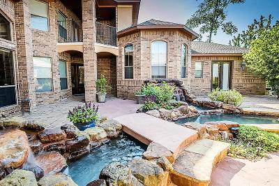 The Woodlands Single Family Home For Sale: 50 S Sage Sparrow Circle