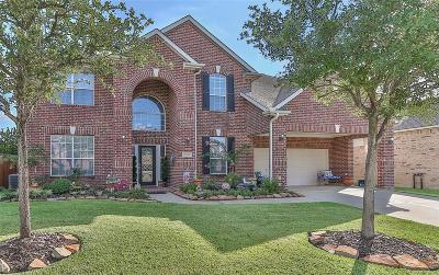 Tomball Single Family Home For Sale: 22415 Two Lakes Drive
