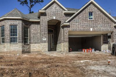 Conroe Single Family Home For Sale: 3528 Woods Estates Drive