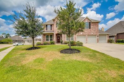 Tomball Single Family Home For Sale: 11110 Arthurian Dream Court