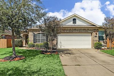 League City Single Family Home For Sale: 2886 Milano Lane