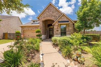 Sugar Land Single Family Home For Sale: 6506 Monrovia Lane