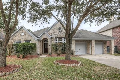 Friendswood Single Family Home For Sale: 3119 Indian Summer Trail