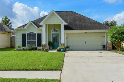 Tomball Single Family Home For Sale: 12719 Pine Woods Street