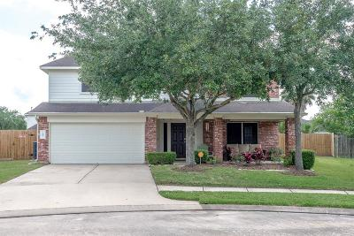 Pearland Single Family Home For Sale: 1905 Vineyard Hill Court