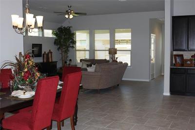 League City Single Family Home For Sale: 1627 Laslina Lane