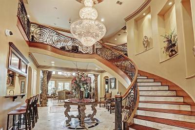Houston Single Family Home For Sale: 1119 River Glynn Drive
