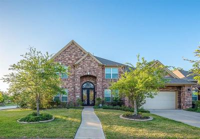 Sugar Land Single Family Home For Sale: 4010 Scenic Valley Lane