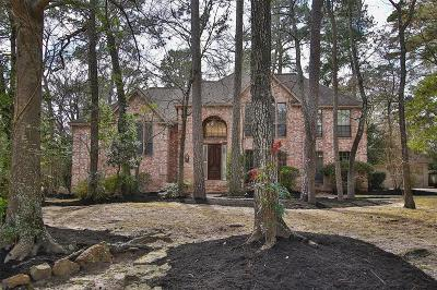 Spring Single Family Home For Sale: 3 E Sunlit Forest Drive