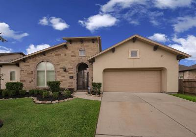 Katy Single Family Home For Sale: 3831 Birdsall Falls Lane