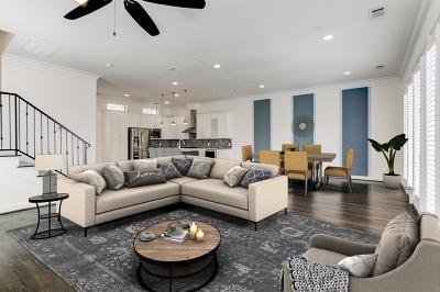 Houston Single Family Home For Sale: 2516 Bevis Street