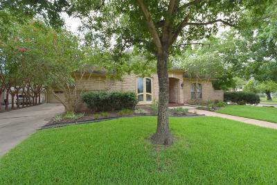 Houston Single Family Home For Sale: 11519 Olympia Drive