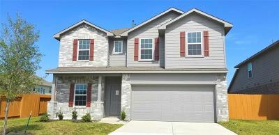 Rosharon Single Family Home For Sale: 2315 Red Slate