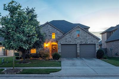 Conroe Single Family Home For Sale: 17250 Rookery Court