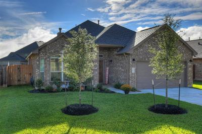 Hockley Single Family Home Option Pending: 16242 Tyler Reach Dr Drive