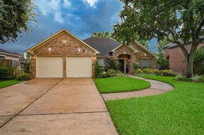 Houston Single Family Home For Sale: 9511 Therrell Drive