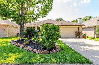 Copperfield, Copperfield Middlegate, Copperfield Northmead Village, Copperfield Place Village Sec, Copperfield South Creek Village, Copperfield Westcreek Village Single Family Home For Sale: 8543 Sparkling Springs Drive