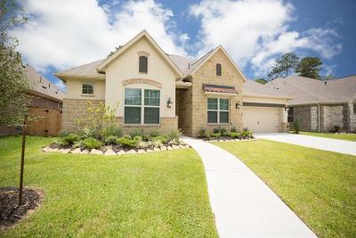 Porter Single Family Home For Sale: 3422 Oakheath Manor Way