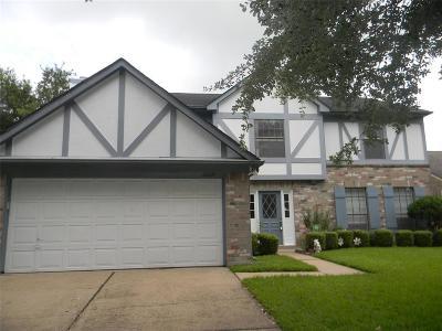 Sugar Land Single Family Home For Sale: 3330 Oak Branch Lane
