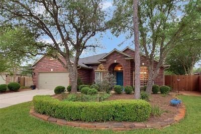 Single Family Home For Sale: 11 Opaline Place