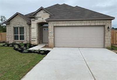 Texas City Single Family Home For Sale: 3014 Royal Albatross Drive
