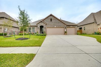 League City Single Family Home For Sale: 2974 Holbrook Valley Lane