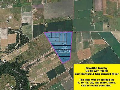 Fort Bend County Farm & Ranch For Sale: 4726 W Tavener Rd Plat K