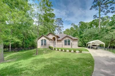 Stagecoach Single Family Home For Sale: 16810 Boothill Road