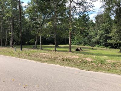 Residential Lots & Land For Sale: 26479 Joy Village Drive