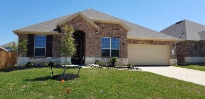 Conroe Single Family Home For Sale: 14109 Emory Peak Court