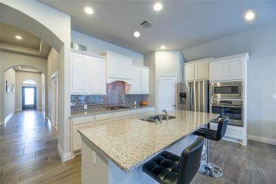 Fulshear Single Family Home For Sale: 2118 Cinnamon Teal Circle