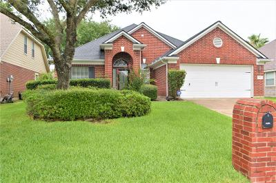 Tomball Single Family Home For Sale: 17511 Forest Vine Court