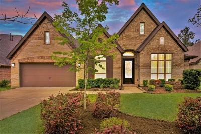 Montgomery Single Family Home For Sale: 130 Diamond Back Lane