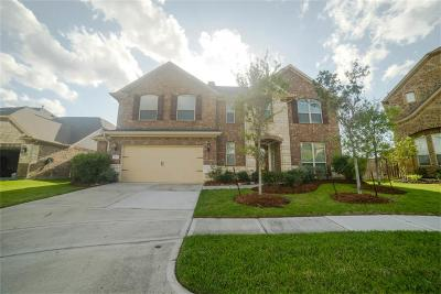 Tomball Single Family Home For Sale: 18731 Oden Trace Drive