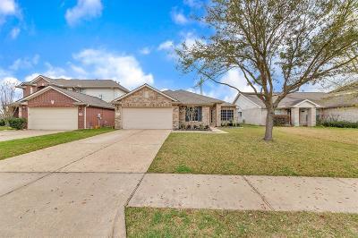 Houston Single Family Home For Sale: 9519 Flying Eagle Court