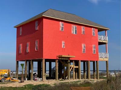 Galveston Single Family Home For Sale: 12035 Sand Dollar Beach Drive