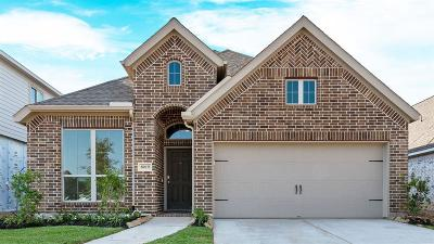 Missouri City Single Family Home For Sale: 8019 Jamesy Way