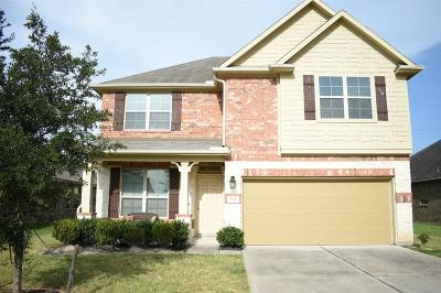 Katy Single Family Home For Sale: 3818 Raintree Village Drive