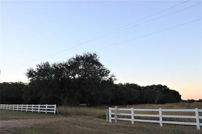 Blessing Residential Lots & Land For Sale: 00 Fm 2853