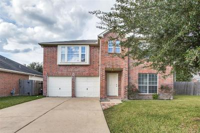 Houston Single Family Home For Sale: 16002 Clayton Green Dr Drive