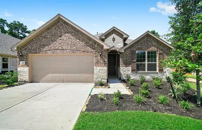 Tomball Single Family Home For Sale: 12006 Mirror Cove Court