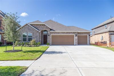 League City Single Family Home For Sale: 4809 Ibarra Lane
