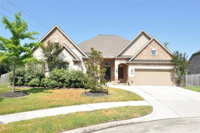 Summerwood Single Family Home For Sale: 15818 Tremout Hollow Lane