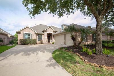 Sugar Land Single Family Home For Sale: 1903 Shadow Lake Drive