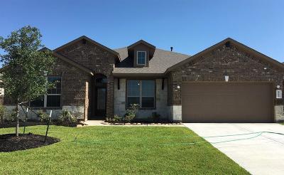 Katy Single Family Home For Sale: 23602 Padova Gardens Drive
