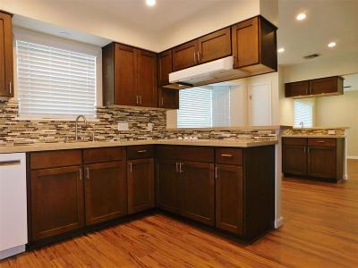 Houston Single Family Home For Sale: 11647 Sagemeadow Lane